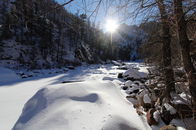 Poudre River in Winter